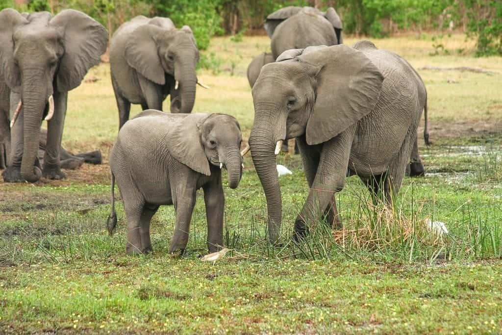 African Holidays: Best Destinations To Visit